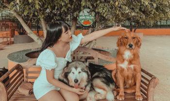 Những góc check-in lạ mắt thu hút giới trẻ ở Đà Lạt